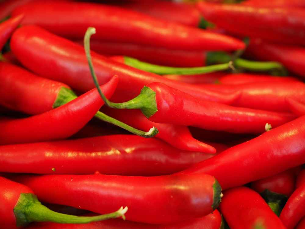 chili-red-sharp-spice-42259.jpeg