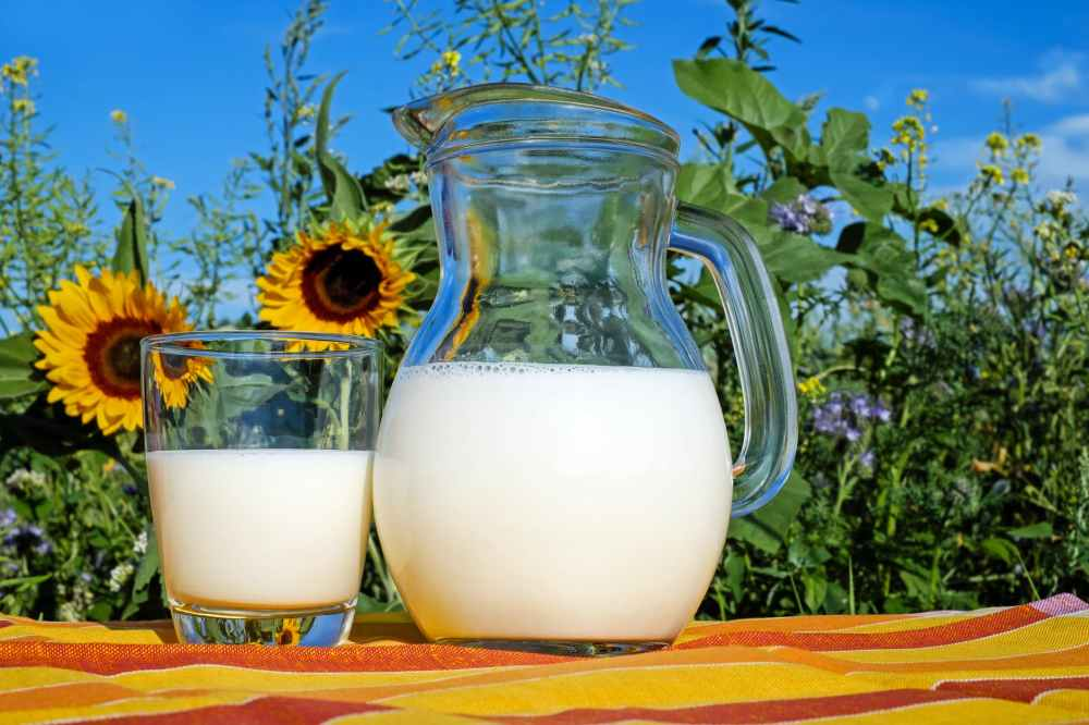 Image result for milk on empty stomach