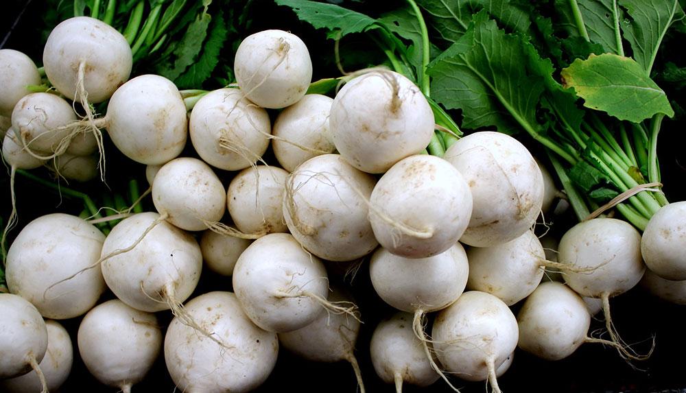 Can pregnant women eat white radish?